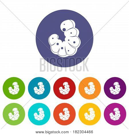 Worm icons set in circle isolated flat vector illustration