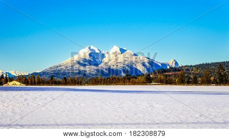 The snow covered peaks of the Golden Ears mountain in Golden Ears Provincial Park seen from Glen Valley in the Fraser Valley of British Columbia, Canada on a cold winter day and snow covered fields