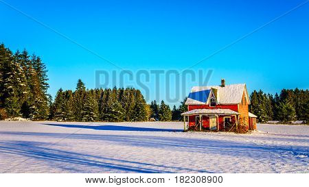 Red dilapidated and abandoned house in a wide snow covered field in Glen Valley in the Fraser Valley of British Columbia, Canada under clear blue sky