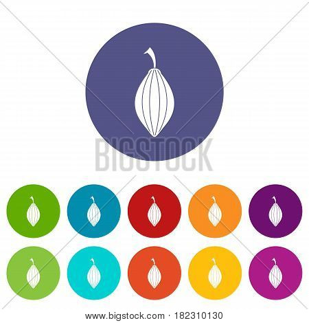 Black cardamom pod icons set in circle isolated flat vector illustration