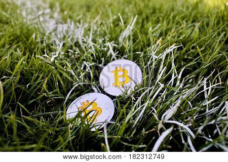 Bitcoins Physical Coins In Grass