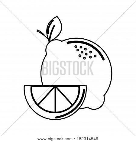 silhouette lemon fruit icon stock, vector illustration design image