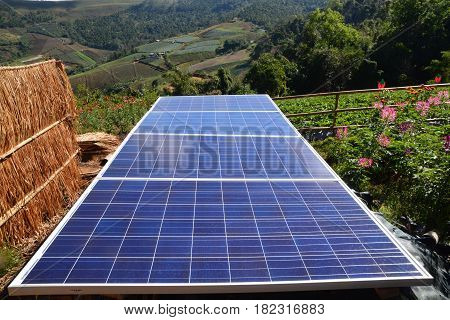 Solar Power or Solar Cell, Solar panels in a field.