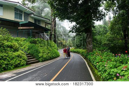 Scenic Road Through Mountain Forest