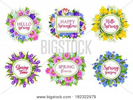 Hello Spring greeting springtime flowers bouquets. Vector icons of floral bunches, blooming tulips and roses, poppy and iris blossoms, daisy and crocus flowers, flourish daffodils for holiday cards