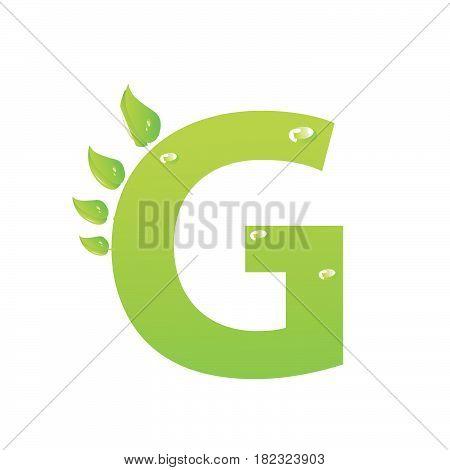 Green eco letter G vector illiustration on white