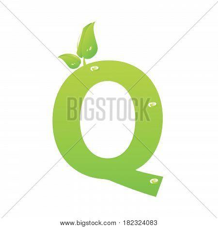 Green eco letter Q vector illiustration on white