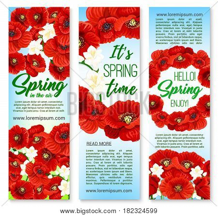 Hello Spring and Happy Springtime Holidays vector banners with greeting quotes, floral bouquets and blooming spring poppy flowers. Red poppy, orchid or daffodils blossoms and butterflies