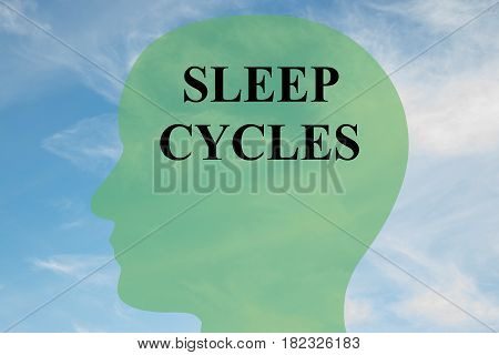 Sleep Cycles - Personality Concept
