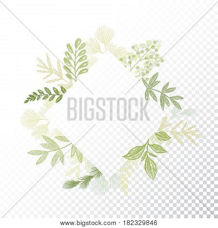 Rhombys greenery floral frame vector. Hand drawn branches and leaves card decoration. Green rhomb flourish border. Transparent background