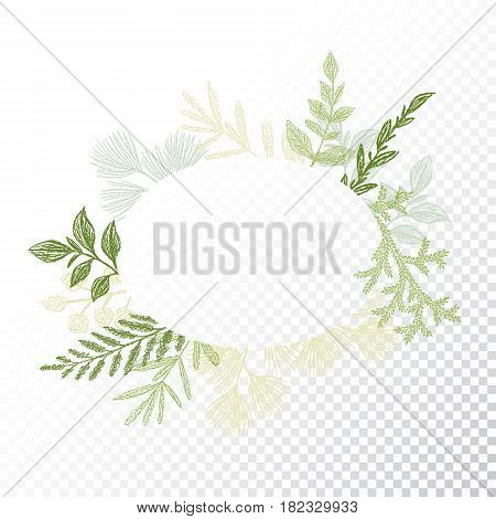 Ellipse floral frame with branches and leaves decoration vector. Oval hand drawn green flourish border for card design. Transparent background