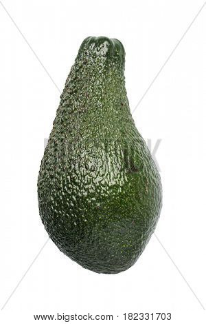 Avocado isolated on a white background