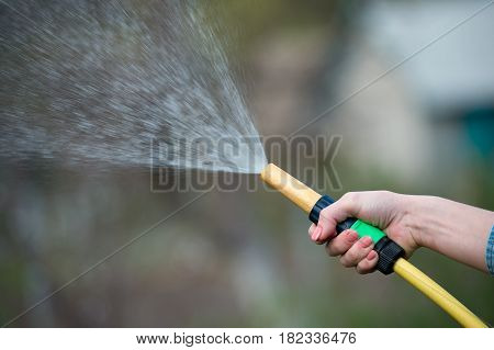 hand watering garden with sprinkler close up