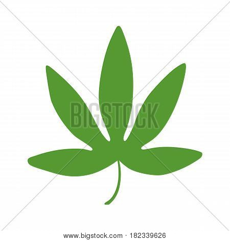 Isolated colored green leaf of passiflora passion fruit granadilla on white background