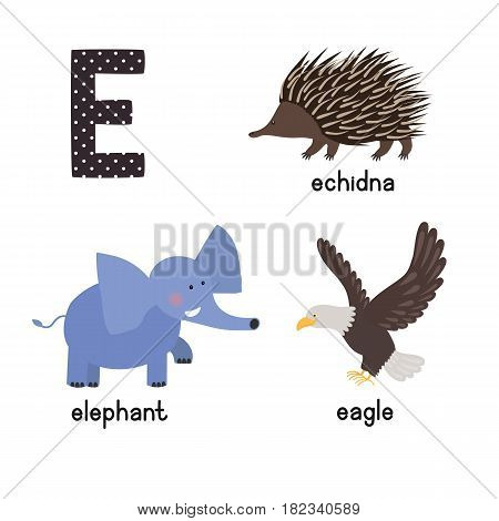 ABC letter E funny kid icons set: eagle, echidna, elephant. Alphabet children education collection.