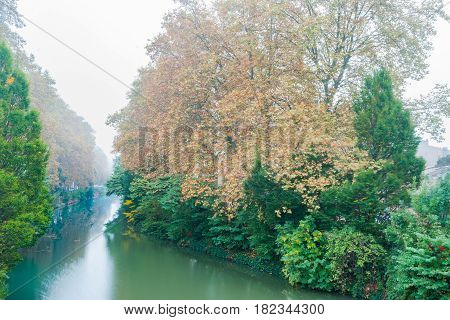Tree colors in morning fog lining a bend in Canal Du Midi in Toulouse France.