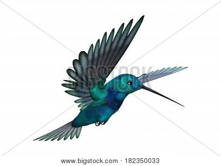 3D Rendering Hummingbird On White