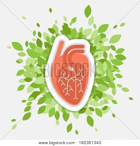 Flat illustration - human heart with green folliage, concept about health and healthy environment, isolated on white background