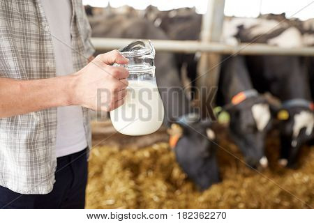 agriculture industry, farming, people and animal husbandry concept - close up of young man or farmer with cows milk in jug at cowshed on dairy farm