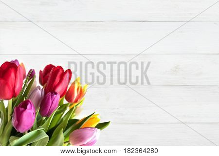 Colorful tulips on white wood in vintage style for mothers day