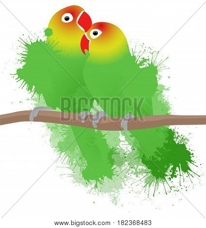 Vector illustration of lovebirds parrots with watercolor splashes. Love. Pair of birds.