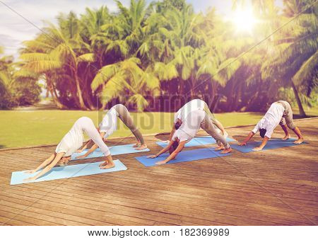 fitness, sport, yoga and healthy lifestyle concept - group of people making downward facing dog pose over natural background with palm trees