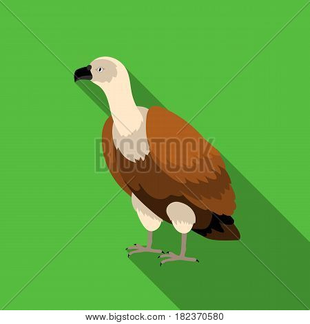 Vulture icon in flate style isolated on white background. Bird symbol vector illustration.
