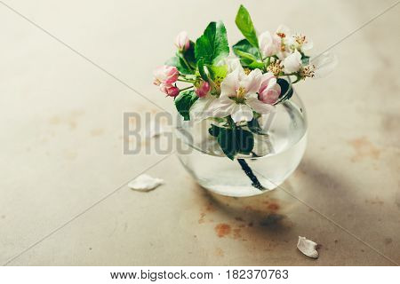 Spring blossoms in glass vase on table.