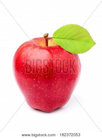 Red Apple Richard with leaf closeup isolated on white background.
