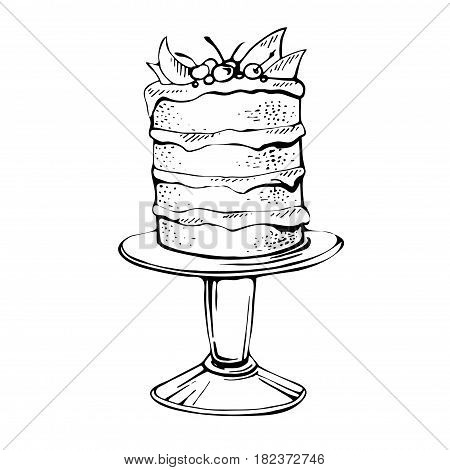 Hand drawn celebration cherry cake . Outlined Birthday Cake.Vector Illustration. Pie isolated on white background