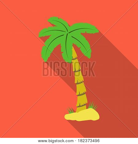 Palm tree icon in flate design isolated on white background. Brazil country symbol stock vector illustration.