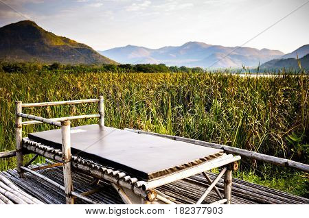 bed in the garden and Landscape mountain with pond and Closeup of beautiful green sedge on bog in spring or summer