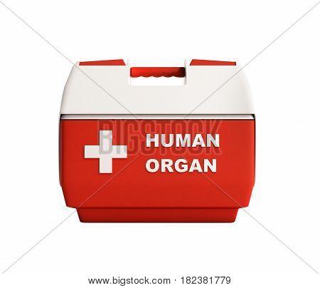 Closed Human Organ Refrigerator Box Red 3D Render No Shadow