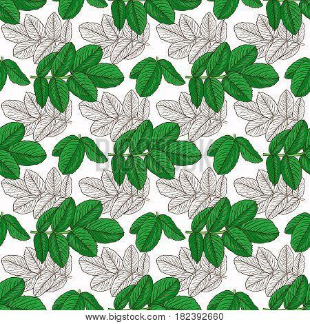 Seamless Pattern Branch Of Dog Rose