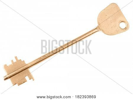 golden key isolated on white background
