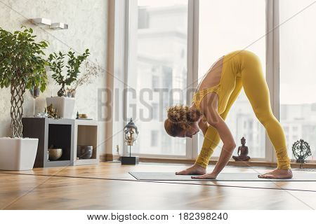 Healthy serine female yogi is standing in position while bending her body down and leaning hands on floor