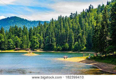 Mountain Lake Among The Forest In National Park Synevir, Ukraine