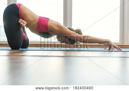 Low angle of calm young woman is kneeling in lotus position and stretching body with arms forward. Her eyes are closed. Copy space