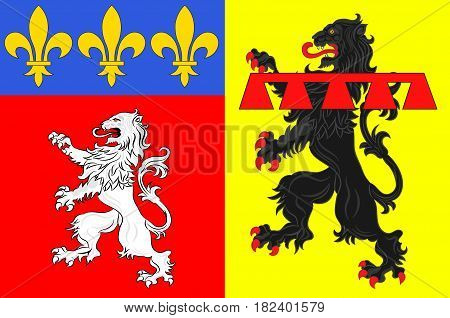 Flag of Rhone is a French department located in the central Eastern region of Auvergne-Rhone-Alpes.