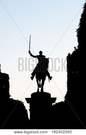 Silhouette of statue of a rider on a horse holding a saber on the sky background in Paris France