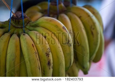 Banana is a Thai fruit so aromatic and sweet for sale at street food market poster