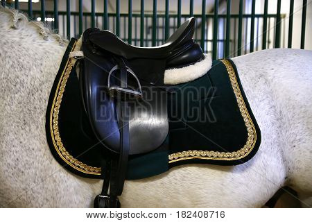 Beautiful leather saddle for equestrian sports on horseback