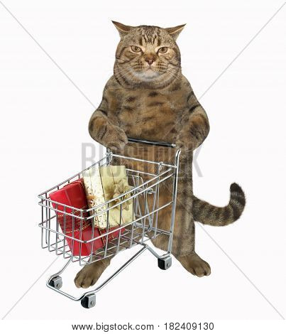 The cute cat is pushing a shopping cart. There are some gifts in it. White background.
