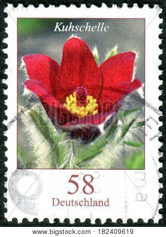 GERMANY - CIRCA 2012: A stamp printed in Germany shows a flower Pulsatilla vulgaris circa 2012