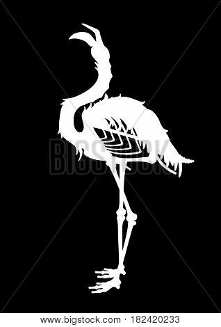 Graphic demonic flamingo silhouette. Shabby bird with open skull and bones. Vector fantasy art isolated on black background