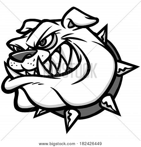 A vector illustration of a Bulldog mascot.