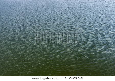 Ripples on the standing lake water in windy day at spring season
