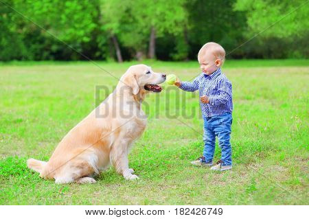 Little Child With Labrador Retriever Dog Is Playing Together With A Ball In The Sumer Park