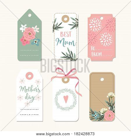Set of romantic Mothers day, birthday or wedding vintage frames, gift tags and labels with flowers and pink ribbon, isolated vector collection.