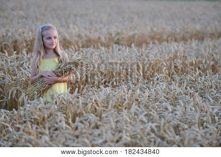 beautiful little girl holding sheaf of wheat